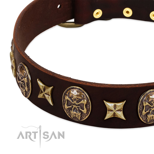 Rust resistant studs on leather dog collar for your pet