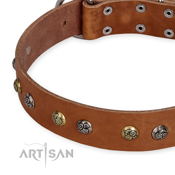 Full grain leather dog collar with stylish design corrosion proof decorations