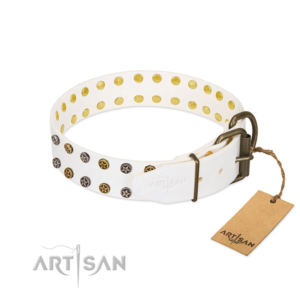 Full grain leather collar with trendy studs for your four-legged friend