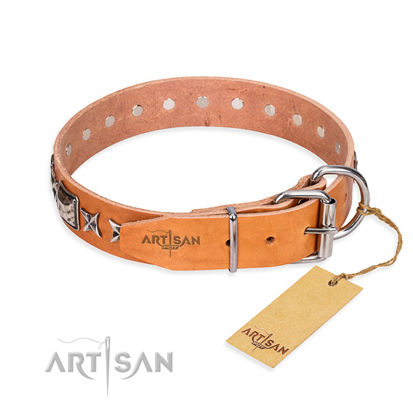 Top notch adorned dog collar of full grain genuine leather