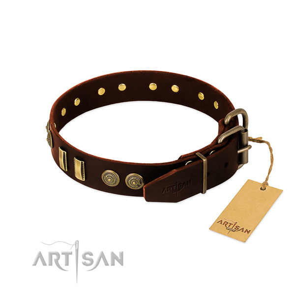 Durable studs on full grain leather dog collar for your canine