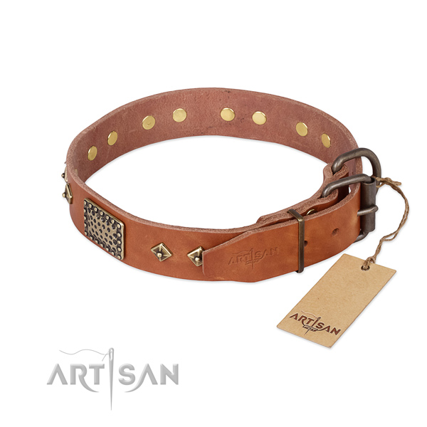 Full grain leather dog collar with reliable D-ring and embellishments