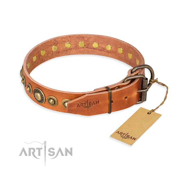 High quality full grain leather dog collar crafted for basic training