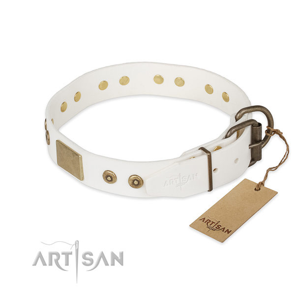 Natural leather dog collar with durable hardware and embellishments