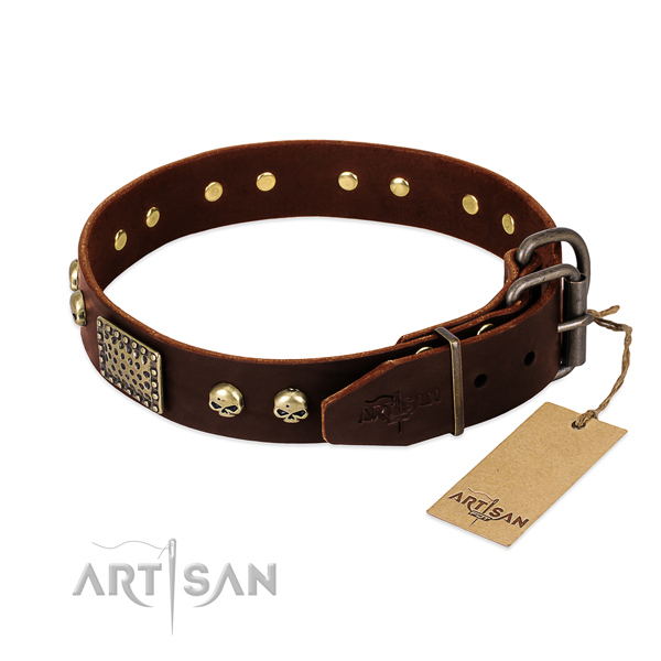 Durable fittings on everyday use dog collar
