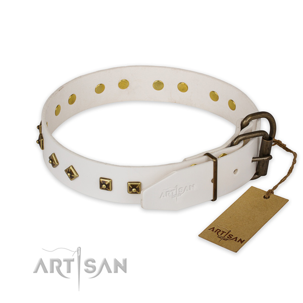 Durable fittings on full grain genuine leather collar for everyday walking your pet