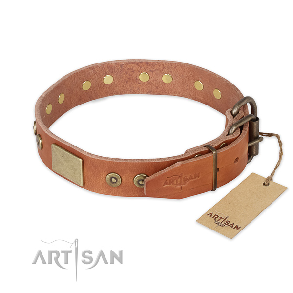 Durable hardware on leather collar for walking your pet