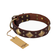 """Golden Square"" FDT Artisan Brown Leather English Bulldog Collar with Large Squares"