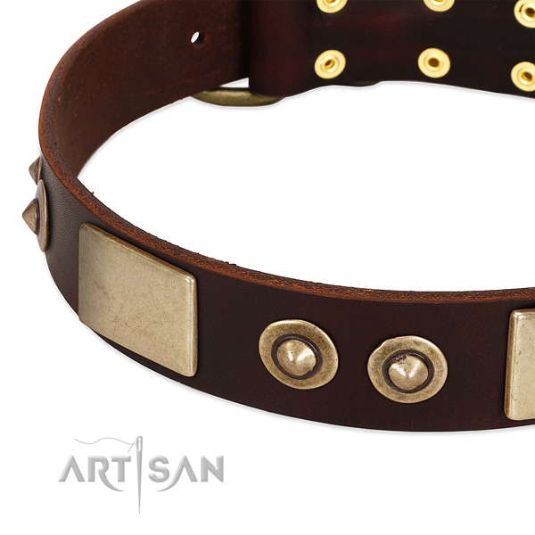 Strong embellishments on full grain natural leather dog collar for your four-legged friend