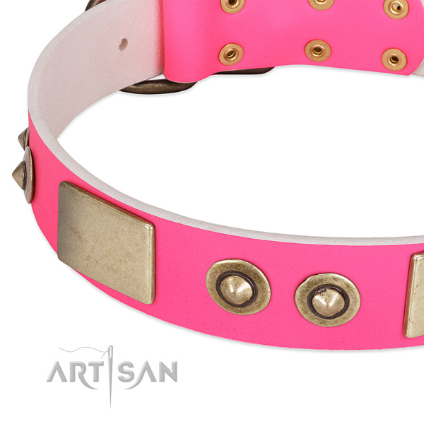 Reliable adornments on full grain natural leather dog collar for your dog