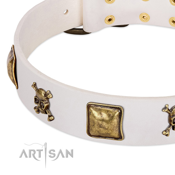 Fashionable full grain leather dog collar with reliable embellishments