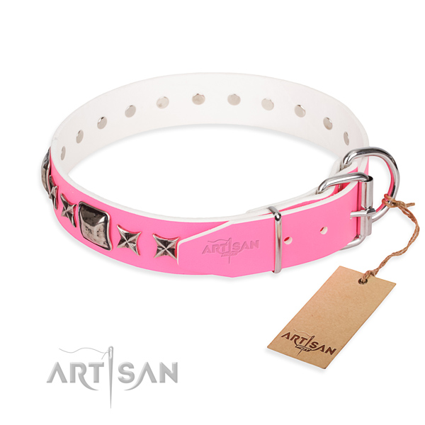 High quality embellished dog collar of natural leather