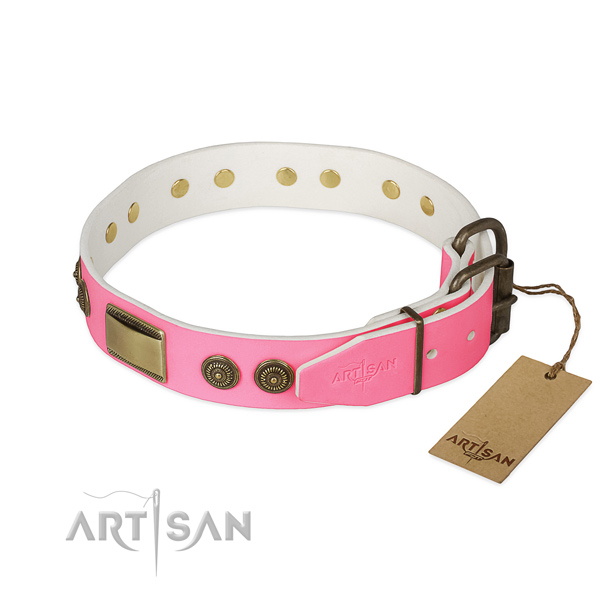 Reliable buckle on daily walking dog collar