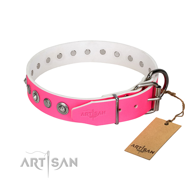 Strong genuine leather dog collar with impressive adornments