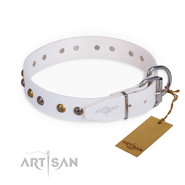 Leather dog collar with fashionable strong adornments