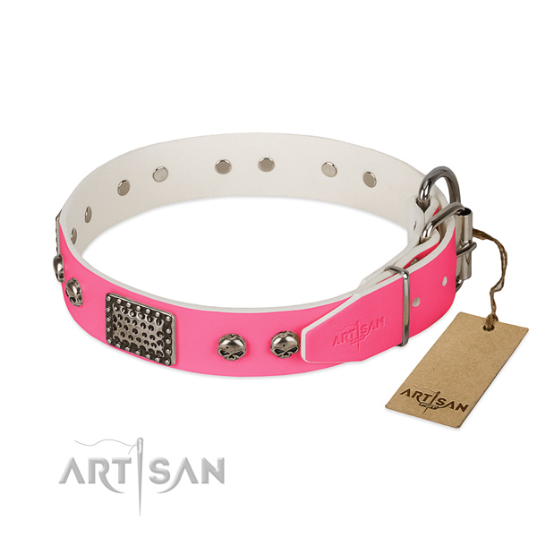 Rust-proof adornments on basic training dog collar