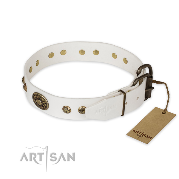 Reliable D-ring on full grain genuine leather collar for basic training your pet