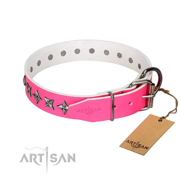 Best quality leather dog collar with exceptional adornments
