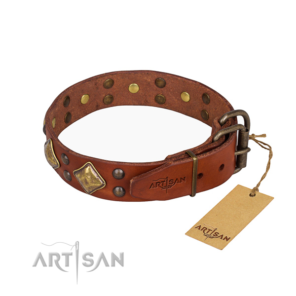 Full grain leather dog collar with stunning strong studs