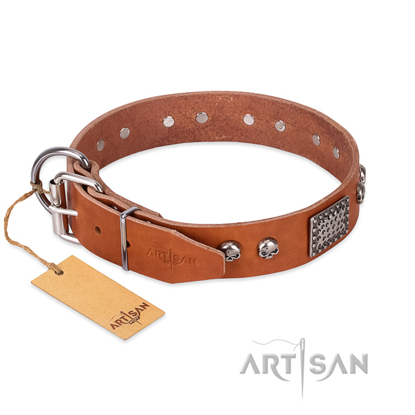Corrosion resistant traditional buckle on walking dog collar