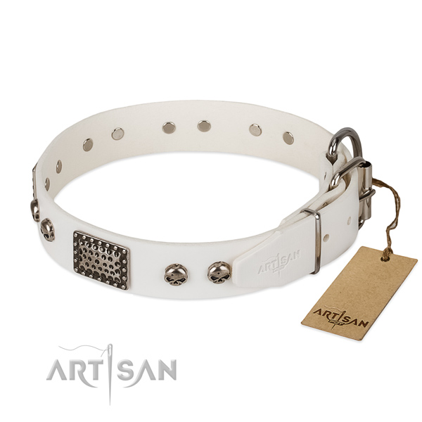 Rust-proof studs on handy use dog collar