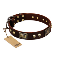 """Magic Amulet"" Brown Leather English Bulldog Collar with Skulls and Plates"