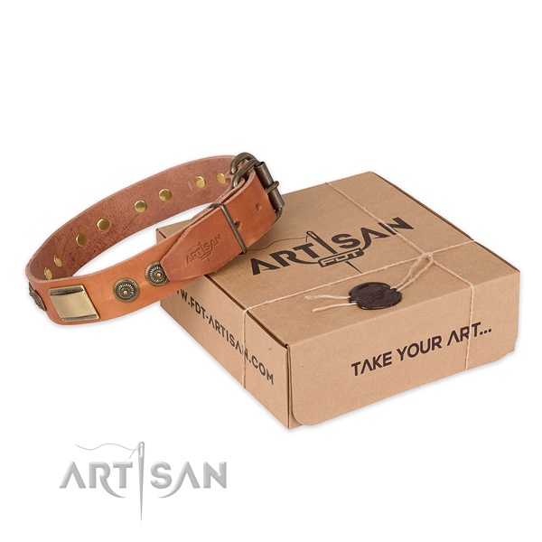 Corrosion proof traditional buckle on natural genuine leather dog collar for basic training