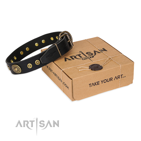 Full grain leather dog collar made of top notch material with rust resistant buckle