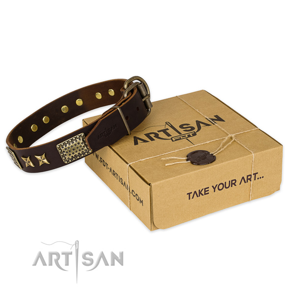 Strong buckle on leather collar for your handsome pet