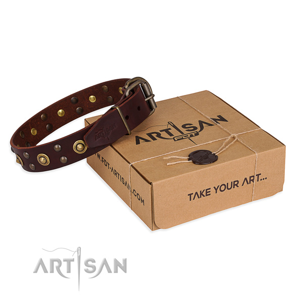 Strong traditional buckle on genuine leather collar for your lovely dog