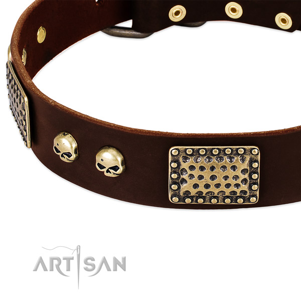 Corrosion resistant fittings on genuine leather dog collar for your canine