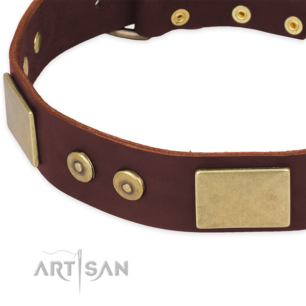 Full grain genuine leather dog collar with embellishments for daily use