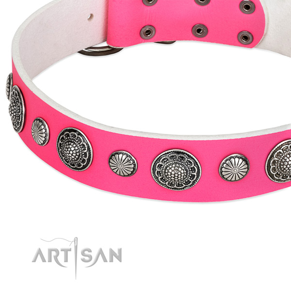 Natural leather collar with corrosion resistant buckle for your lovely four-legged friend