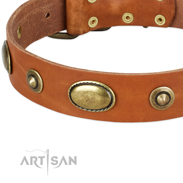 Rust-proof adornments on full grain leather dog collar for your canine