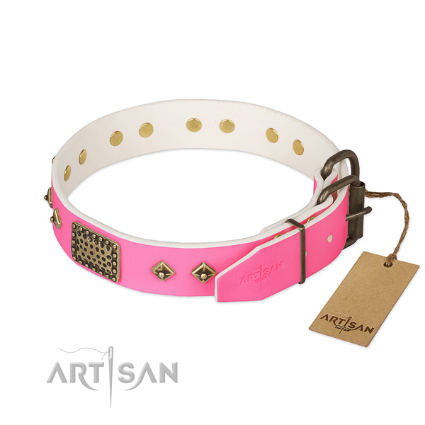Rust resistant D-ring on easy wearing dog collar