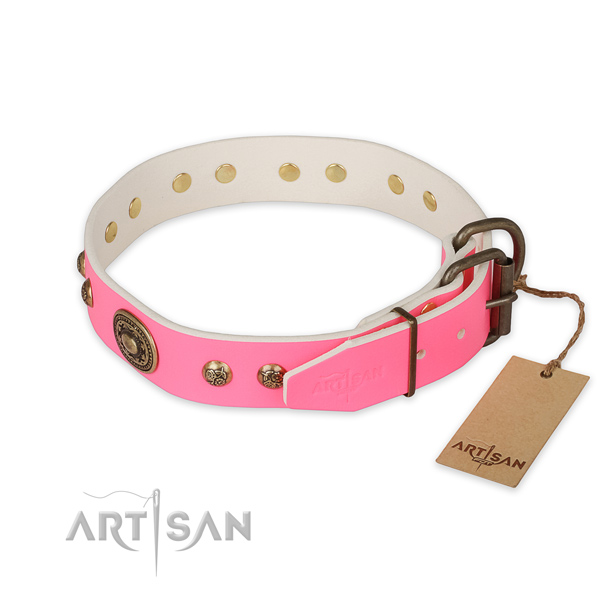 Rust resistant traditional buckle on genuine leather collar for basic training your four-legged friend