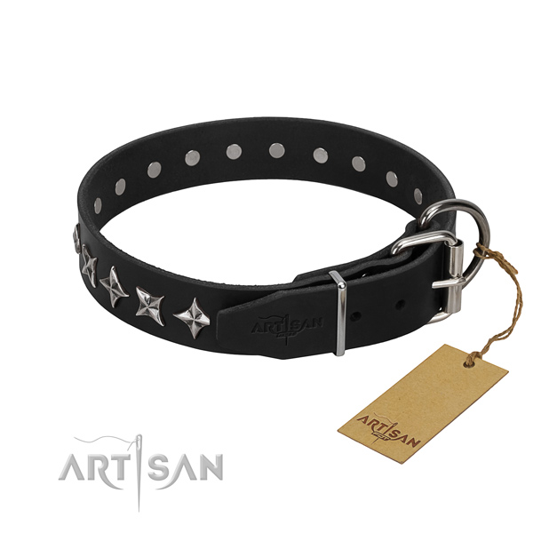 Everyday use decorated dog collar of best quality full grain natural leather