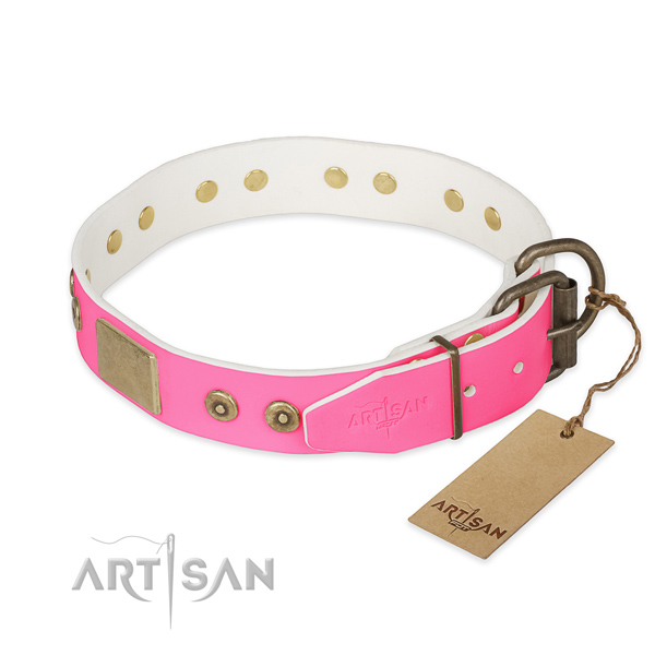 Corrosion proof adornments on handy use dog collar