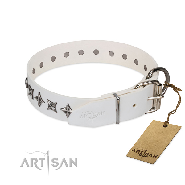 Daily walking adorned dog collar of finest quality natural leather