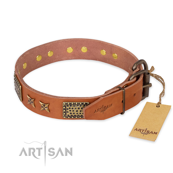 Rust-proof fittings on full grain natural leather collar for your stylish canine
