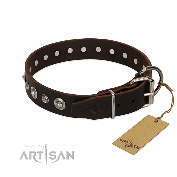 Durable full grain leather dog collar with exceptional adornments