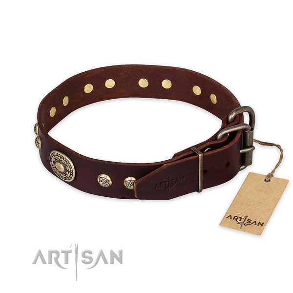 Rust-proof buckle on leather collar for daily walking your four-legged friend