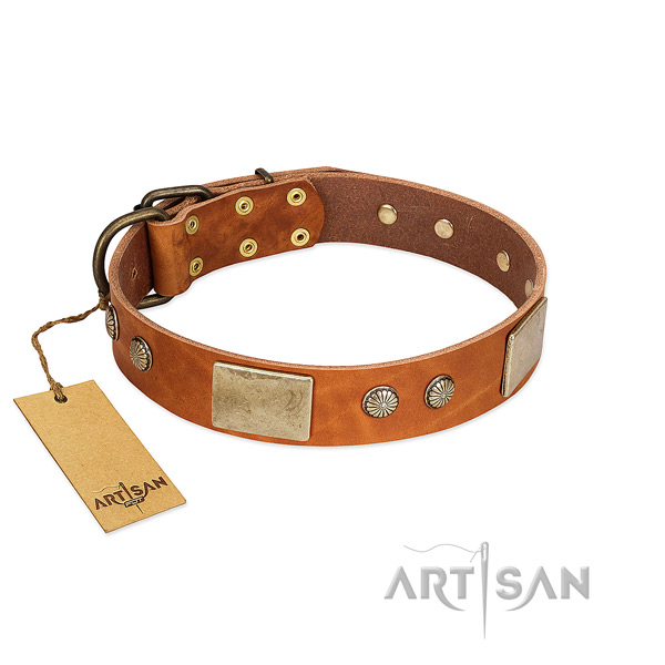Easy adjustable full grain natural leather dog collar for basic training your four-legged friend