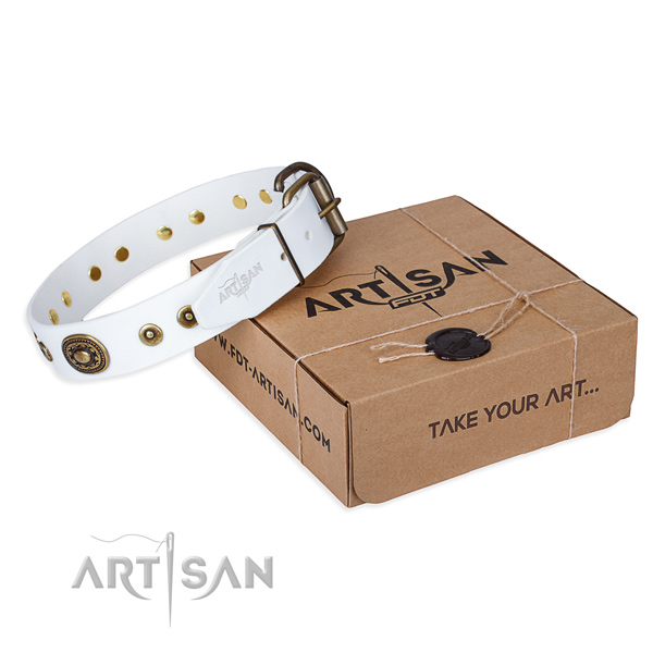 Natural genuine leather dog collar made of high quality material with durable fittings