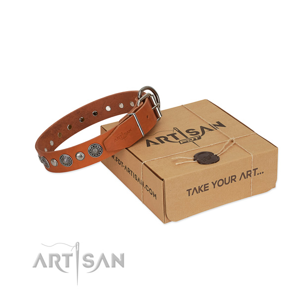 Full grain genuine leather collar with reliable fittings for your attractive pet