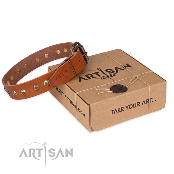 Strong fittings on full grain leather collar for your beautiful doggie