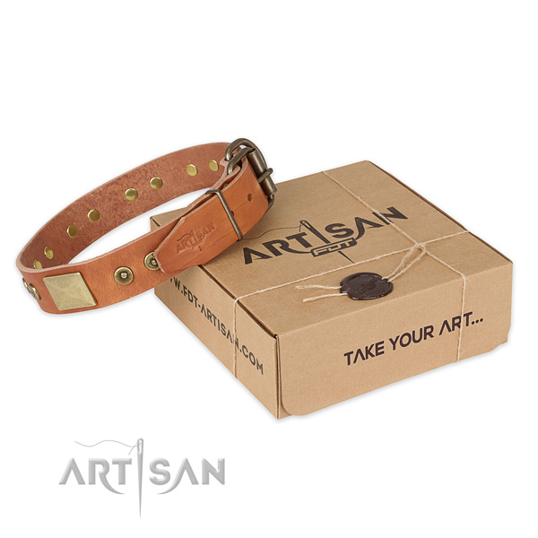 Strong traditional buckle on full grain genuine leather dog collar for everyday use