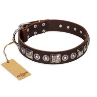 """Pierian spring"" FDT Artisan Brown Leather English Bulldog Collar with Silvery Decorations"