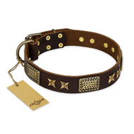 """Sparkling Bronze"" FDT Artisan Genuine Leather English Bulldog Collar with Bronze Look Stars and Plates"