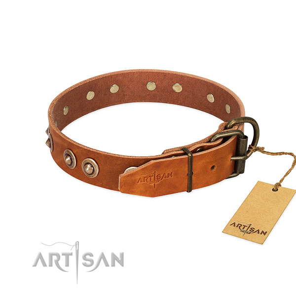 Durable studs on full grain genuine leather dog collar for your canine